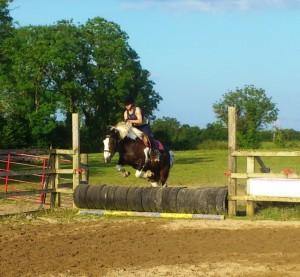 Paardenkamp 1
